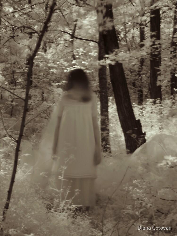 ghost reveries ii by Diana Cotovan