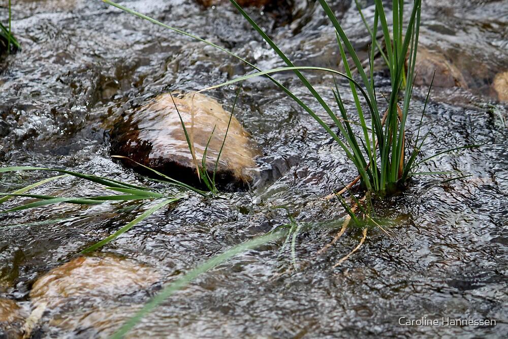 Flooding by Caroline Hannessen