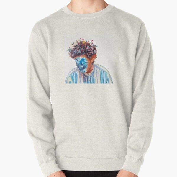 The Fall of Hobo Johnson - Hobo Johnson Pullover Sweatshirt