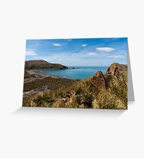 Gold Harbour Greeting Card