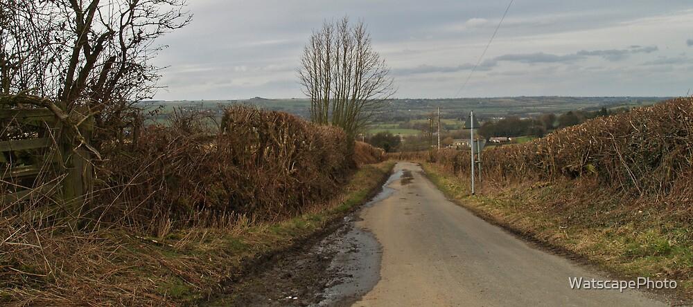 Bedlam Lane by WatscapePhoto