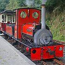 Launceston Steam Railway, August 2019 by RedHillDigital