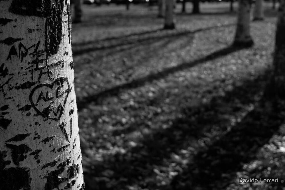 Scars by Davide Ferrari