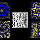The Development of a Floral Kaleidoscope  by Keith Richardson