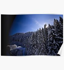 Austrian Alps - The picturesque estate Poster