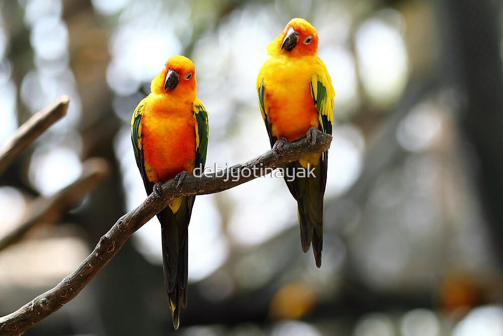 The birds of Asia series # 5. by debjyotinayak