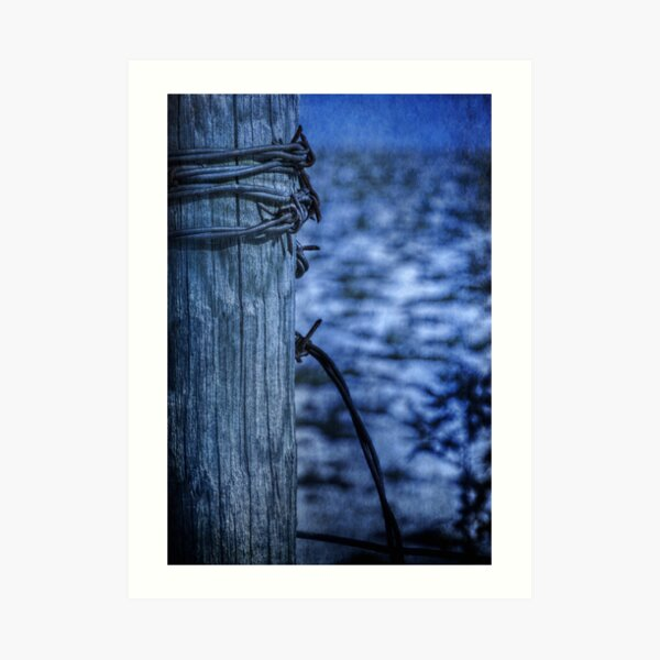 Barbed Wire in Blue Art Print