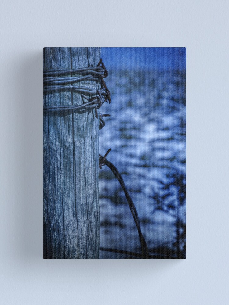 Alternate view of Barbed Wire in Blue Canvas Print