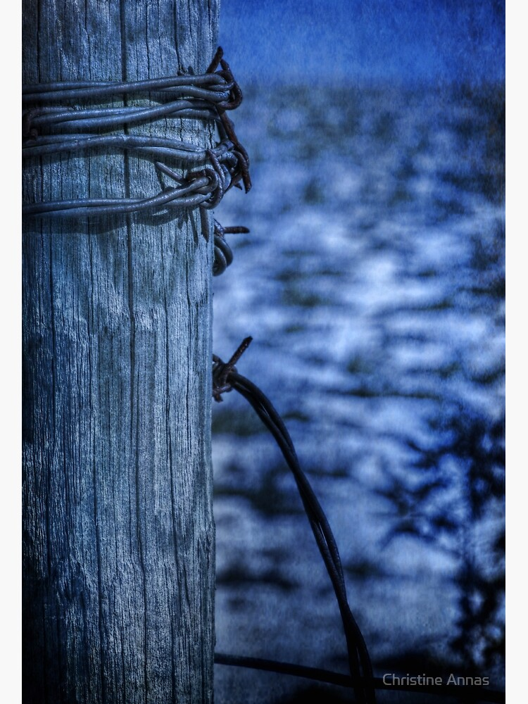 Barbed Wire in Blue by 2Bricks