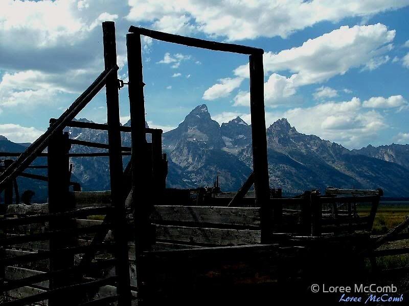 Framed Teton by © Loree McComb