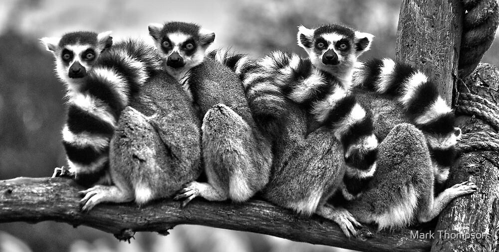 Group hug by Mark Thompson