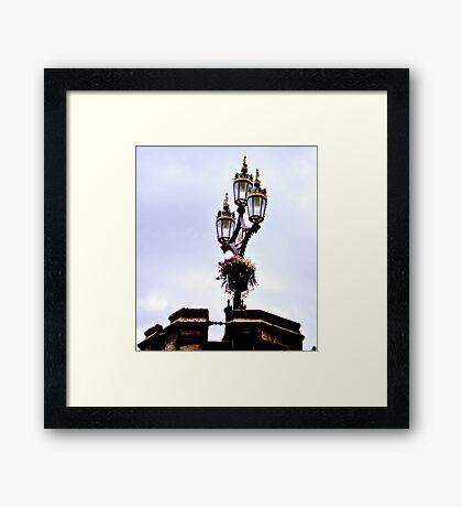 Crown of Gold Framed Print