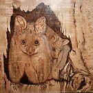 Possum Mum & Bub by aussiebushstick