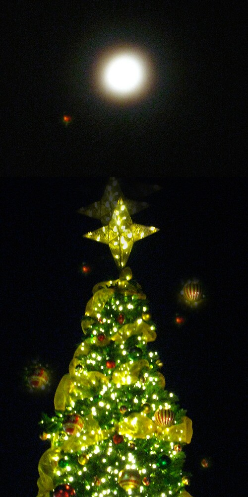 Holiday Tree by eileenS