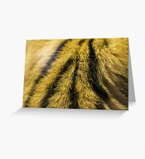 Fur of a Cerval Greeting Card