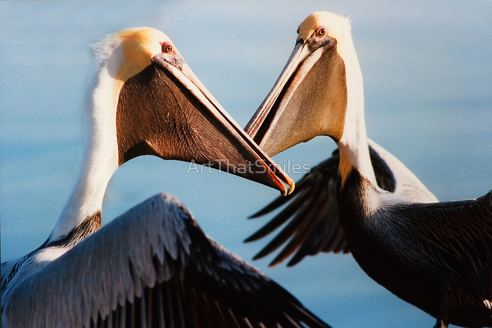 """Chatting Pelicans"" - animated brown pelicans by ArtThatSmiles"