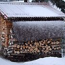 Ready for Winter? by vbk70