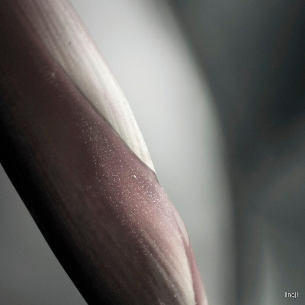 The Softest Part of Me... Kauai Sensual Series by linaji