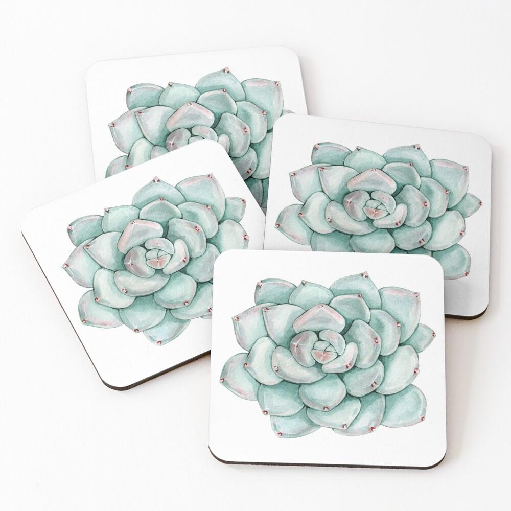 Succulent, watercolor Coasters (Set of 4)