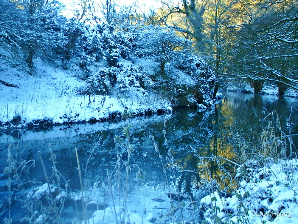 Winter Reflections by Stuart Harley