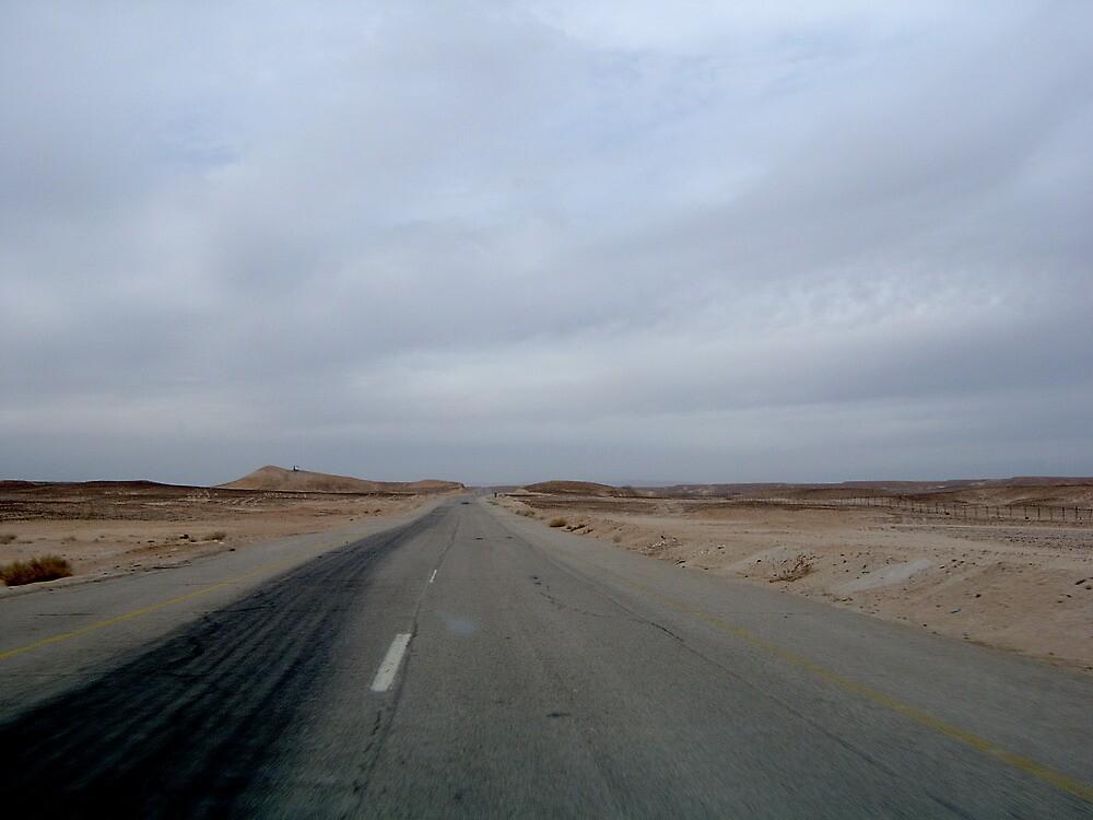 Sinai desert.  Border between Egypt and Israel by dizzyshell42