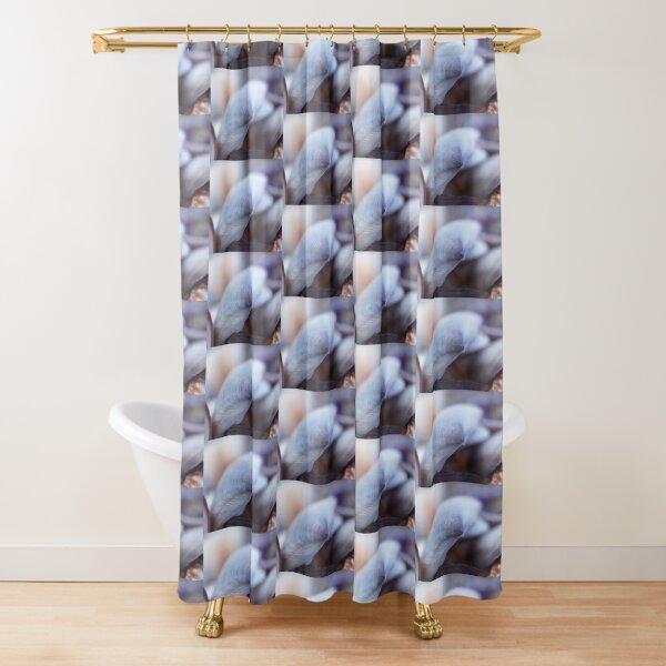 Shell Blue Shower Curtain