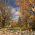 US - MA - Southborough - fall on the wall by renprovo