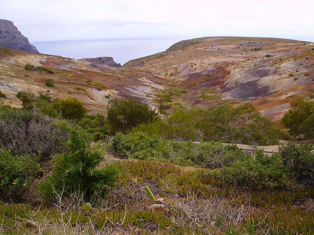 St Helena terrain by dizzyshell42
