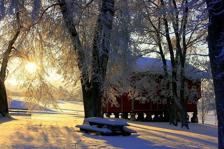 Norwegian Winter by AmyKippernes