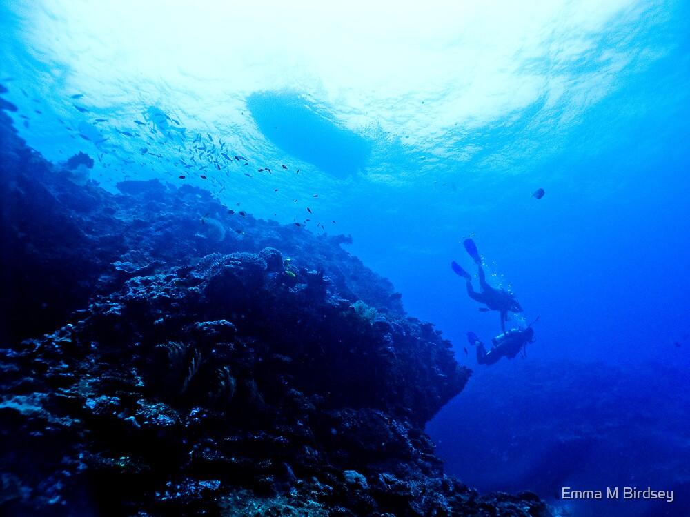 Divers descending reef wall / Emma M Birdsey by Emma M Birdsey