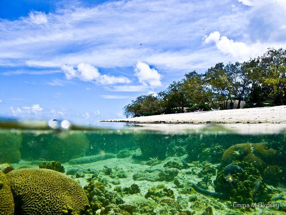 Split-shot coral reef and island.  Lady Elliot Island Australia / Emma M Birdsey by Emma M Birdsey