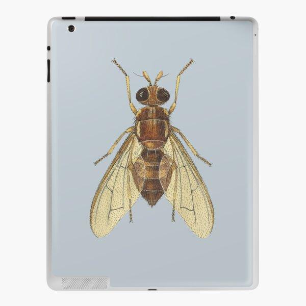 The Queensland Fruit Fly (cut-away) iPad Skin