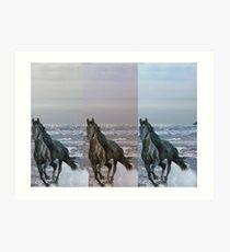 """3-Horses - Digital Manipulation"" Art Print"