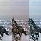 """3-Horses - Digital Manipulation"" by Tim&Paria Sauls"