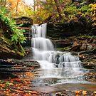 Autumn Below the Nameless Forgotten Waterfall by Gene Walls