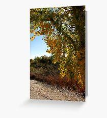 Autumn in Arizona Greeting Card