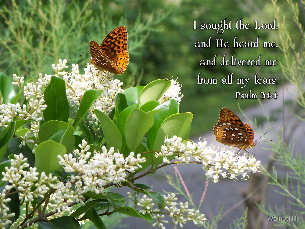 I sought the Lord by WalnutHill