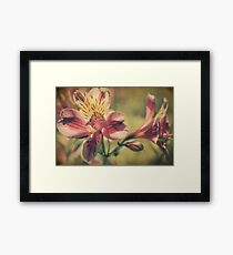 The Very Thought of You Framed Print