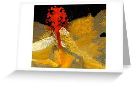 Pistil In Red... Kauai Sensual Series  by linaji
