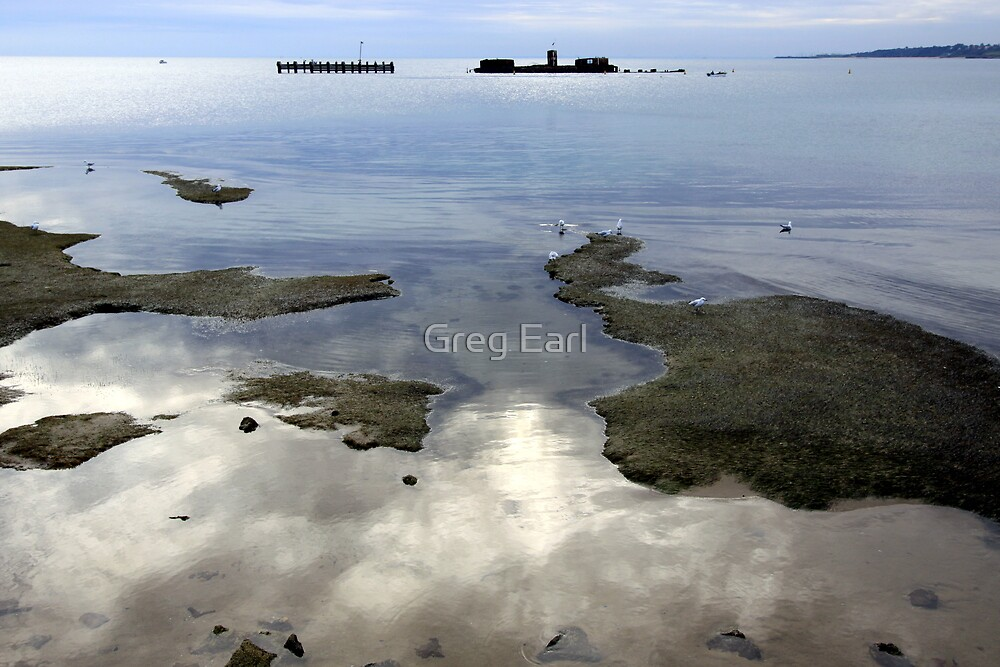 Winter Reflections - Half Moon Bay by Greg Earl