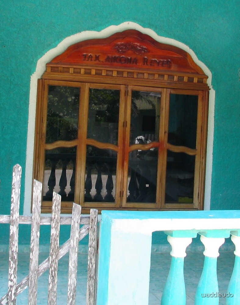 """""""Carved Window, Caribbean Building"""" by waddleudo"""