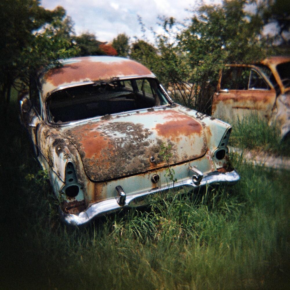 Car in the Home Paddock_1 by Steve Lovegrove