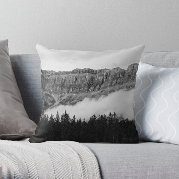 Here Be Dragons 4 Throw Pillow