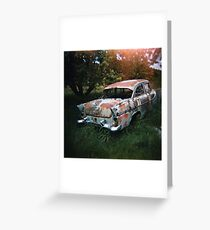 Car in the Home Paddock_3 Greeting Card