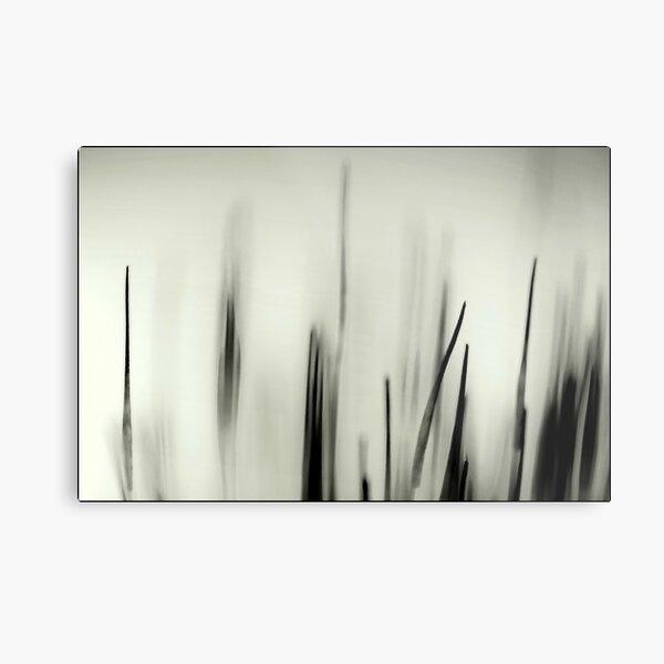 Abstract Moss Metal Print
