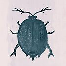 Beetle, Two by Sybille Sterk