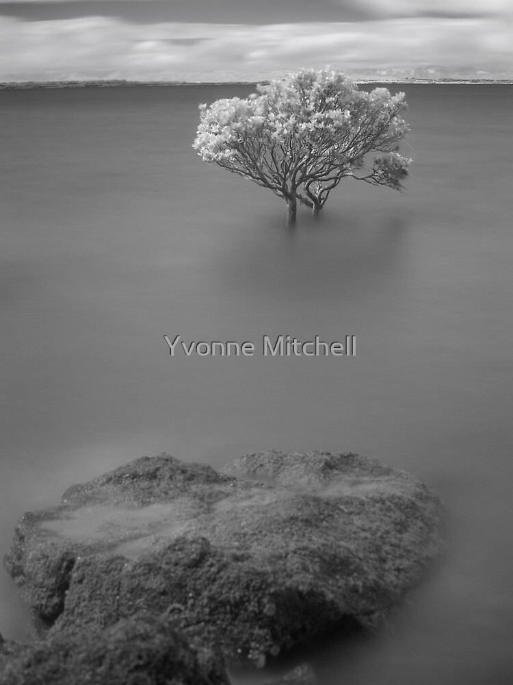 Stand off by Yvonne Mitchell