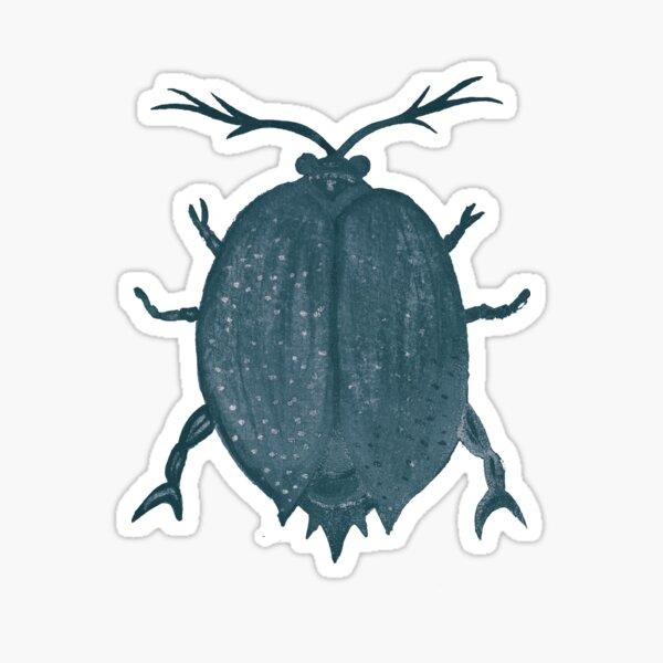Beetle, Two Sticker