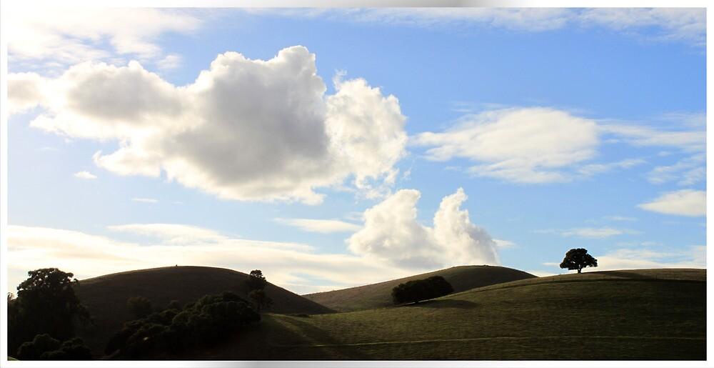 East Bay Hills by gerardofm4