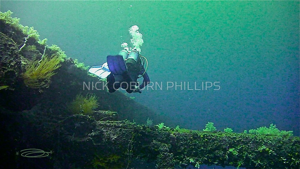 BLUE JOURNEY by NICK COBURN PHILLIPS